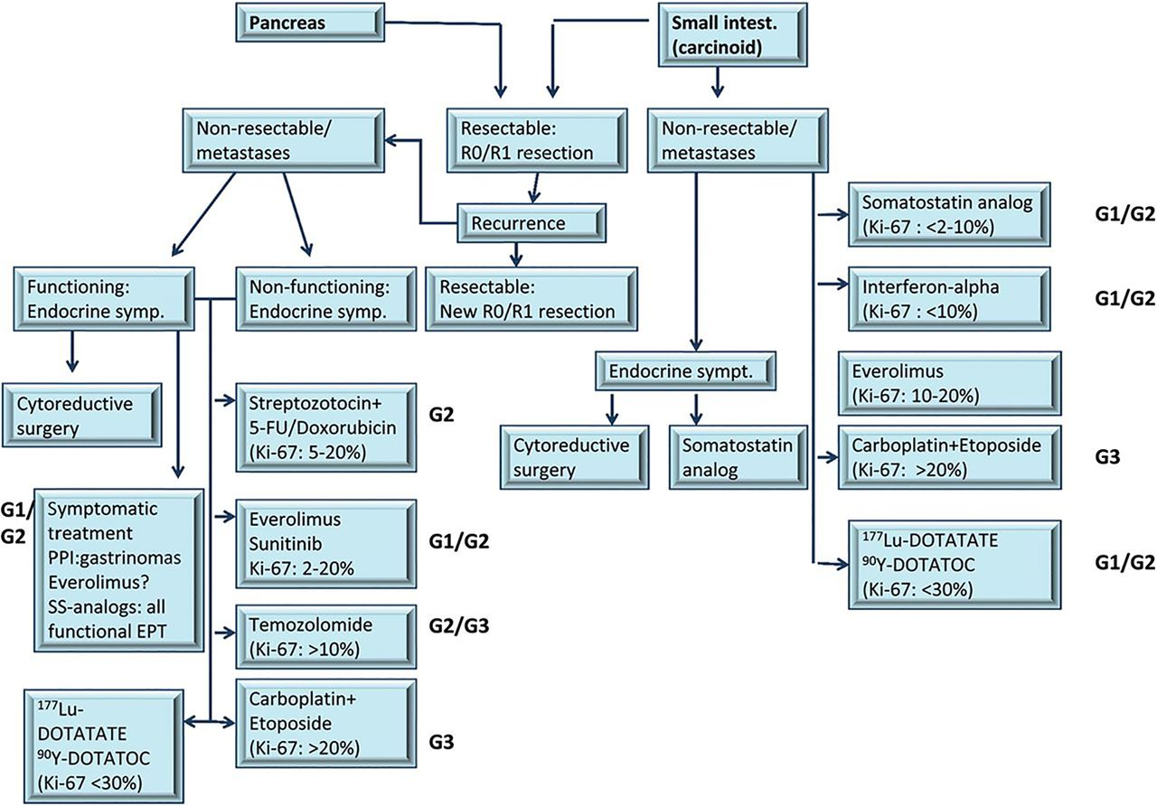 Treatment Options for Carcinoid Tumours of the Lung